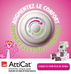 Atticat Feature